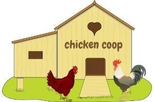 Best chicken coop kit